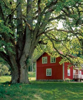 Eiche Parkett, Schweden | Berg und Berg | HolzLand Bunzel in Marl und Hamm
